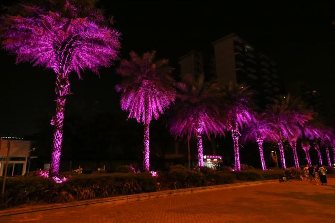 IP65 72W RGBW 4 In 1 LED Garden Spotlights 5